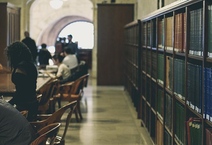 International and European studies